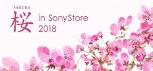 「桜 in Sony Store 2018」